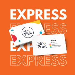 Express Standard Namecards
